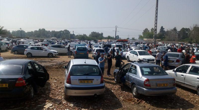 أحوال سوق القليعة للسيارات المستعملة ليوم 18 جوان 2019